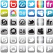 Social media icons — Stock Vector #6071897