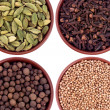 Collage of various spices — Stock Photo