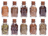 Assortment of different spices in glass bottles — Stock Photo