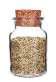 Glass bottle full of fennel seeds isolated on white — Stock Photo