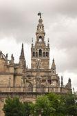 Katedral. sevilla. i̇spanya. — Stok fotoğraf