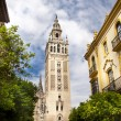 Cathedral of Seville, Spain — Stock Photo #6282280