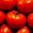 Genetically modified tomatos — Stock Photo