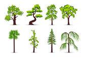 Ağaçlar simgeler — Stok Vektör