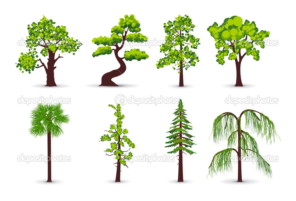 Tree Plan Vector Trees Icons Vector by Popcic