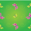 Background butterfly — Stock Photo