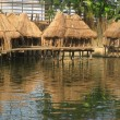 Stock Photo: Tropical huts