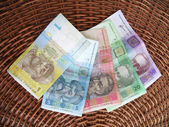 Ukrainian money, hryvna. — Stock Photo