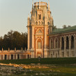 grand palace in tsaritsyno — Stock Photo