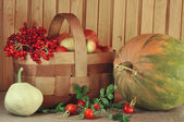 Vegetables, fruit and berries — Stock Photo