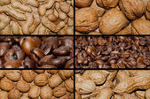 Nuts and coffee — Stock Photo