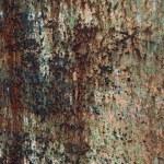 piastra di ferro arrugginito trama — Foto Stock