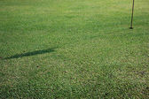 Shadow of the flagstick on golf hole — Stock Photo