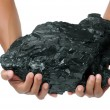 A big lump of coal is held with two hands - Stock Photo