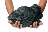 A big lump of coal is held with two hands — Foto Stock