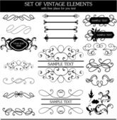 Calligraphic vintage set — Stock Vector