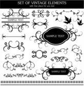 Calligraphic vintage set — Stock Vector