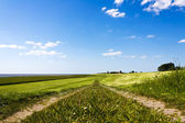 Pathway on top of dike leading to the horizon — Stock Photo