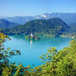 Photo from air perspective, Bled lake with island - Stock Photo