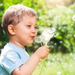 Boy With Dandelion — Stock Photo #5704835