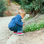 Boy in the garden — Stock Photo