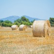 Haystack on a field — Stock Photo #6716357