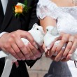 Royalty-Free Stock Photo: Wedding pigeons