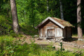 σπίτι του forester — Φωτογραφία Αρχείου