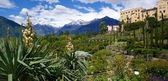 Botanical gardens from Merano — Stock Photo