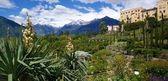 Botanical gardens from Merano — Stock Photo