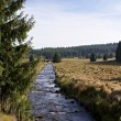 Stock Photo: Hiking in Erzgebirge, Germany-11