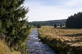 Hiking in the Erzgebirge, Germany-11 — Stock Photo