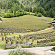 Hay harvest in South Tyrol — Stock Photo