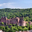 Panoramfrom castle Heidelberg — Stock Photo #5646389