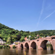 The Old Bridge over the Neckar — Stock Photo