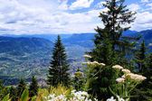 View in the Etschtal in South Tyrol — Stock Photo