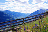 View in the Vinschgau, South Tyrol — Stock Photo