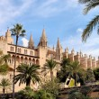 The Cathedral of Santa Maria of Palma — Stock Photo