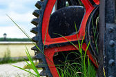 Gears in grass — Stock Photo