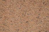 Parede de pedra — Foto Stock