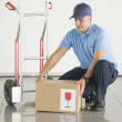 Delivery — Stock Photo #6468030