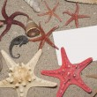 Starfish — Stock Photo #6535758