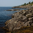 littoral du lac ladoga — Photo