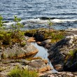The shore of Ladoga — 图库照片