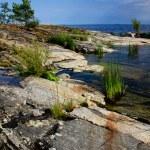 lagoga kıyı — Stok fotoğraf