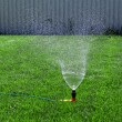 Lawn with Sprinkler — Stock Photo #5595830