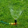 Lawn with Sprinkler — Stock Photo #5595873
