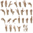 ASL Alphabet with labels - Stock Photo