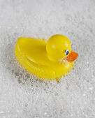 Rubber Ducky bathtime — Stock Photo