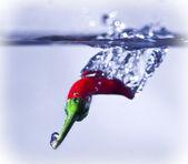 Chilli Splash — Stock Photo